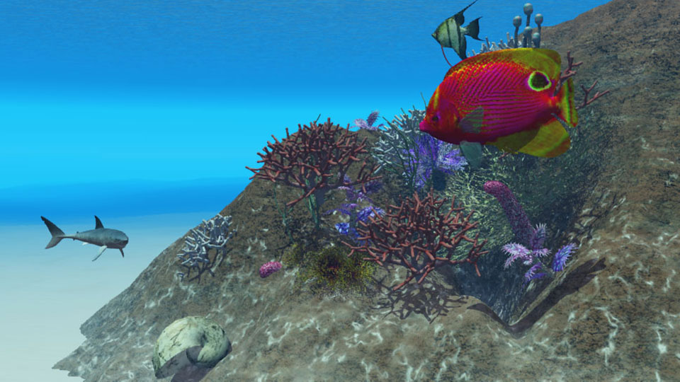Illustration 3D Reef